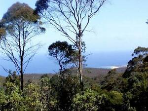 LAND FOR SALE. UNIQUE RAIN-FOREST RETREAT/OCEAN VIEWS, E/TASMANIA St Marys Break ODay Area Preview