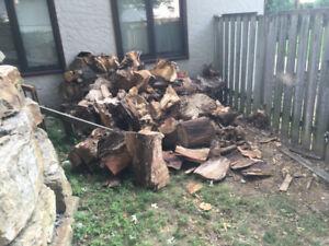Bois de Chauffage / Firewood GRATUIT