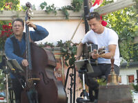 Parties, Christmas,weddings -Live Duo - All styles - See Video