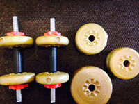 Barbell et Dumbells d'exercice / workout Dumbells and barbell