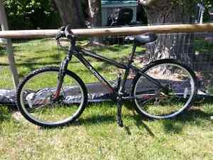 """15"""" Norco"""