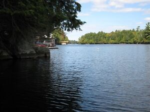 Waterfront lot on Lake Manitouwabing