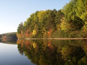 BARRY'S BAY COTTAGE FOR RENT - Kaszuby area, Wadsworth Lake