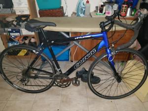 Carrara road bicycle in good condition