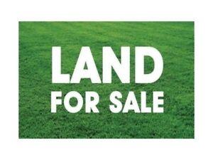 Half Acre Lot $220,000
