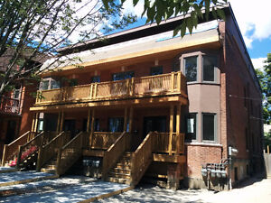3 Bedroom lower level SUITE @ Spadina & College - LOCATION!!!!