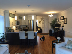 Beautiful Newly Renovated Condo on Quidi Vidi Lake