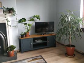 Cotswold Company Solid Wood Large Blue TV Unit