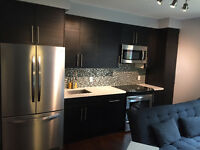 Brand New Unit For Rent South Cabbagetown