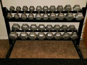 Set Hex Dumbbells 5lbs to 45lbs + 2 Tier Dumbbell Rack prostyle