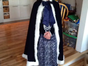 Winter/Ice Princess Dress (Elsa/Anna) Hallowe'en Costume