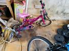 Girls 1st bike