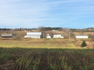 Beautiful Farm House for Rent in the Country