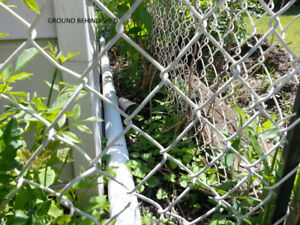 Wanted:  20 feet white vinyl chain link  fencing