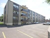 NEWLY RENOVATED 1 BDRM APARTMENT KINGSTON RD DANFORTH AVE