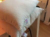 Pair of Organic Buckwheat Husk Pillows