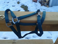 Halter and Lead Rope - NEW
