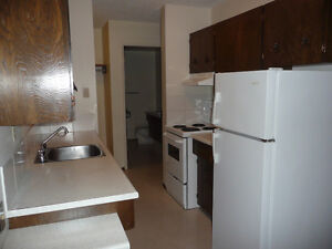 One Bedroom Suite in the Heart of Old Strathcona Edmonton Edmonton Area image 3