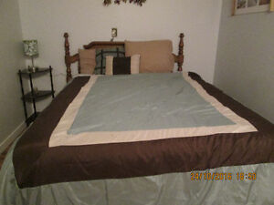 Queen Size Comforter with 2 pillows