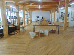ST.HENRI - COMMERCIAL loft for rent in beautiful sud-ouest