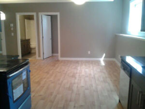 Newer legal basement Suite in Rosewood for rent