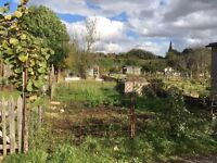 Items wanted for allotment