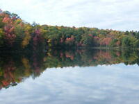 Muskoka Fall Colours Retreat - catered Cottage experience