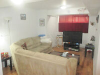 Fully renovated basement 3 1/2 Downtown Metro Atwater Sept 1st