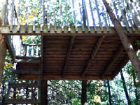 tree fort - preassure treated lumber