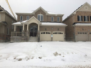 Brand New Home never before lived in, 4 bedroom 3.5 washrooms