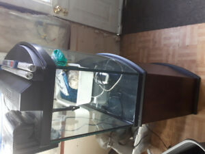 Complete 36gal Bow Front Fish Tank