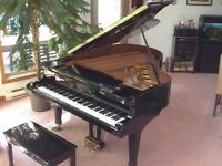 Young Chang Grand Piano 6'1""