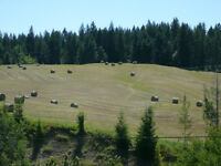 Creston Valley 60 Acres for sale in Lister