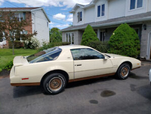 1984 Firebird SE Automatic 86K in Excellent Condition