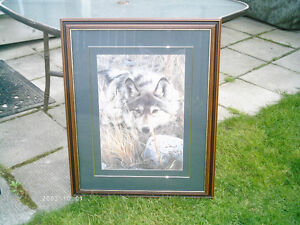 """Picture of Wolf 31 1/2"""" x 25"""""""
