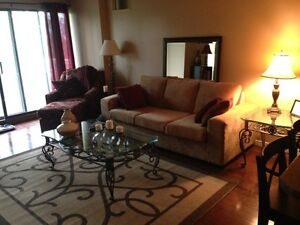 Female roommate wanted to share furnished condo