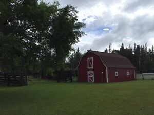 Shellbrook acreage, hobby farm, ranch