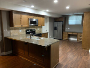 spacious 2 bedroom basement suite for rent (1200 sq ft) Langley