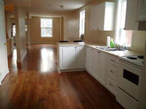 4 Bedroom Apartment in Centretown – Available September 1st