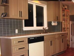 Solid Maple Kitchen Cabinets