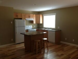 NEWER 2 BEDROOM LEGAL BASEMENT SUITE
