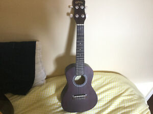 Ukulele in Perfect Condition