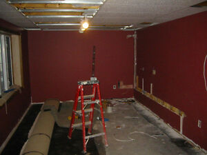 ARE YOU THINKING OF RENOVATING?? Belleville Belleville Area image 3