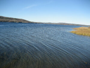Lac Cayamant  531 feet of Waterfront / One acre land for sale Gatineau Ottawa / Gatineau Area image 2
