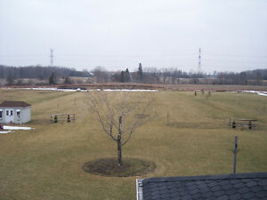 LAWN MOWING SERVICES STARTING AT LOW $65.00!!!! Cambridge Kitchener Area image 8