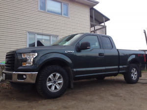 2015 f150 bumpers