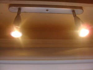Chrome Ceiling Light with Two Bulbs