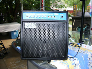 Schecter Guitar Research T30R Tube Amplifier