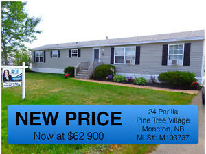 NEW PRICE! Beautiful mini home in Pine Tree Village!