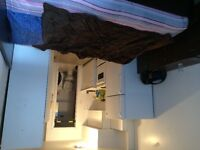 sublet 1 & 1/2 studio near Mcgill, give bed frame,mattress,cabin